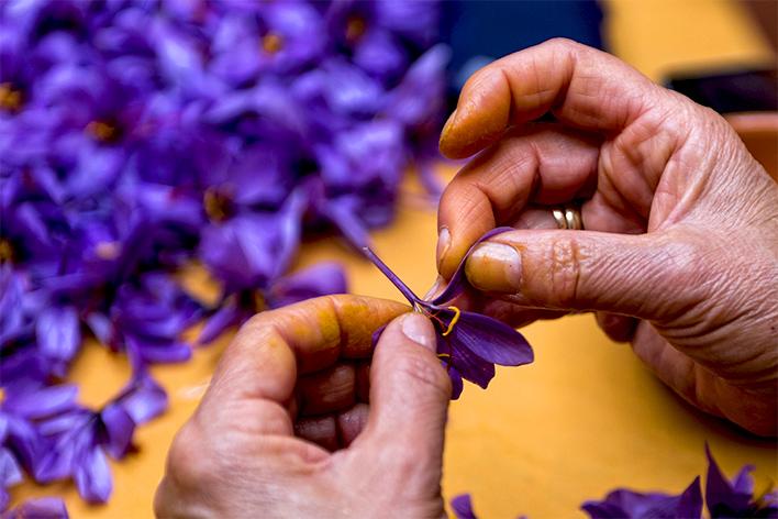 Saffraanextract:  een kostbaar ingrediënt